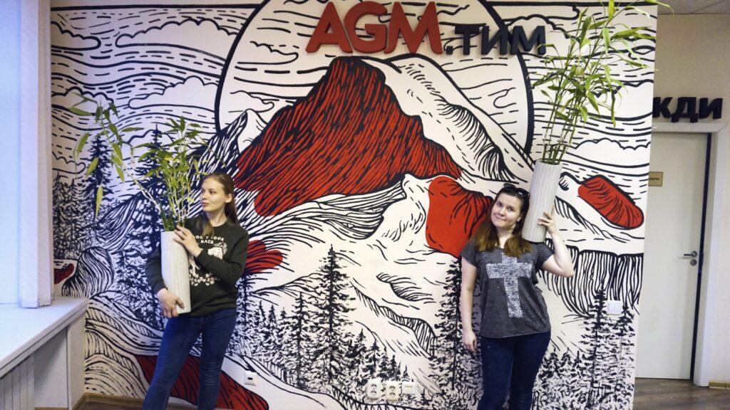 красно черные горы на стене компании